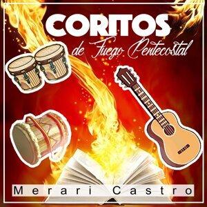 Merari Castro 歌手頭像