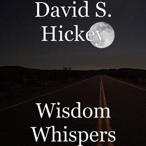 David S. Hickey 歌手頭像