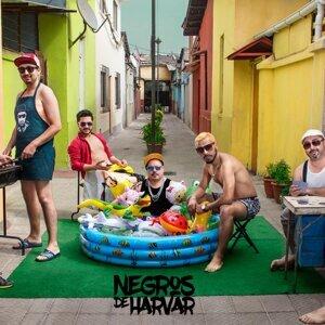 Negros de Harvar