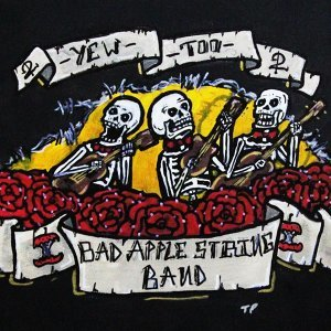 Bad Apple String Band 歌手頭像