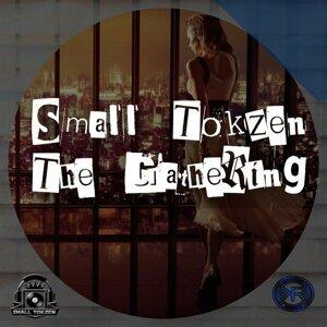 Small Tokzen 歌手頭像