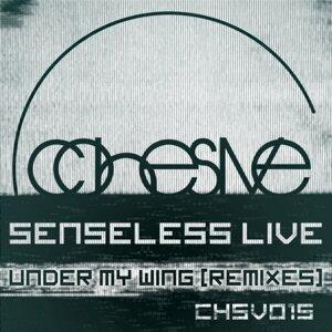 Senseless Live 歌手頭像