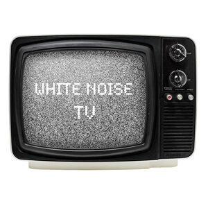 White Noise Recorders 歌手頭像