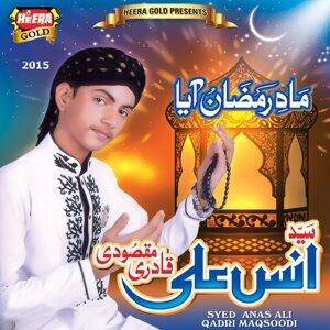 Syed Anas Ali Qadri Maqsoodi 歌手頭像
