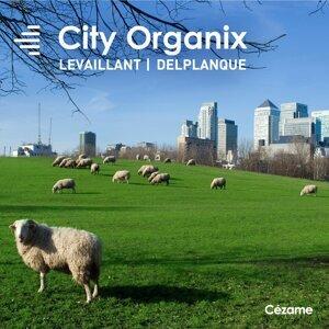 Denis Levaillant, Mathias Delplanque 歌手頭像