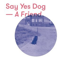 Say Yes Dog
