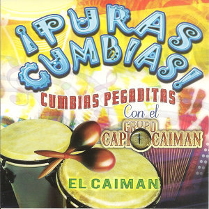Grupo Caiman 歌手頭像