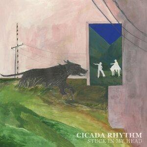Cicada Rhythm 歌手頭像