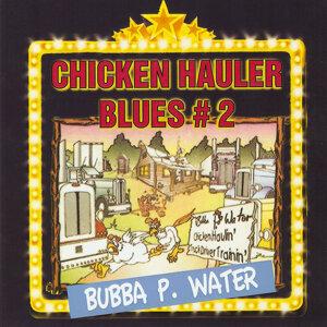 Bubba P. Waters 歌手頭像