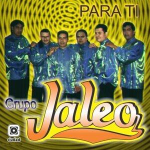 Grupo Jaleo 歌手頭像