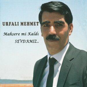 Urfalı Mehmet 歌手頭像