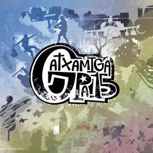 Gatxamiga Pa'15 歌手頭像