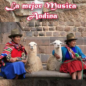 Antaras Andinas de Cajamarca 歌手頭像
