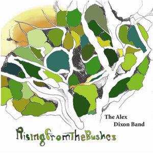 The Alex Dixon Band 歌手頭像