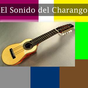 Charango Panti 歌手頭像