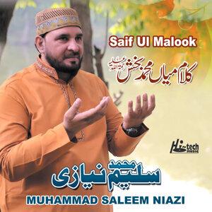 Muhammad Saleem Niazi 歌手頭像