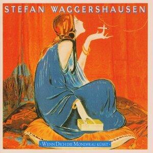 Stefan Waggershausen アーティスト写真