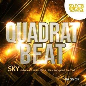Quadrat Beat