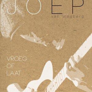 Joep van Wegberg アーティスト写真