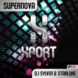DJ Sylver & Starluke アーティスト写真