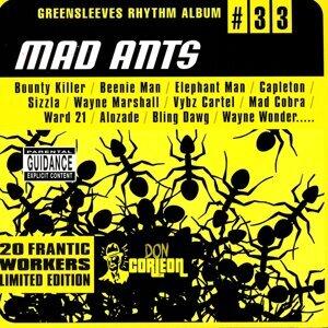 Mad Ants 歌手頭像