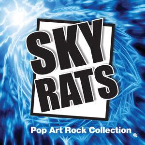 Sky Rats 歌手頭像