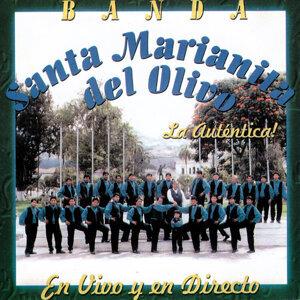 Banda Santa Marianita del Olivo 歌手頭像