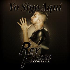 Rey Falco Pandilla X 歌手頭像