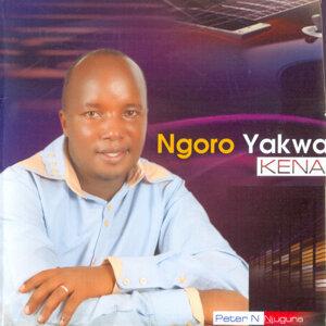 Peter N Njuguna 歌手頭像