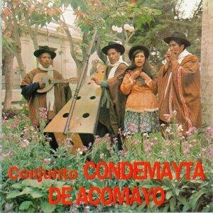 Conjunto Condemayta de Acomayo 歌手頭像