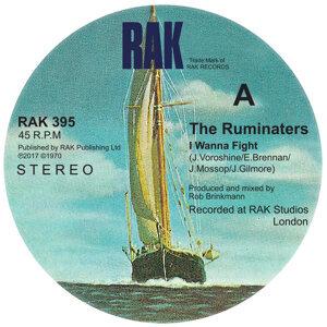 The Ruminaters 歌手頭像