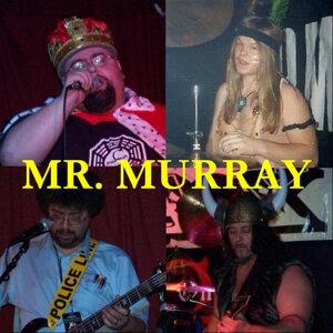 Mr Murray 歌手頭像