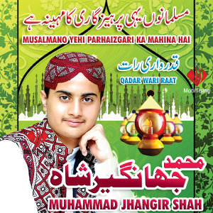 Muhammad Jahangeer Shah 歌手頭像