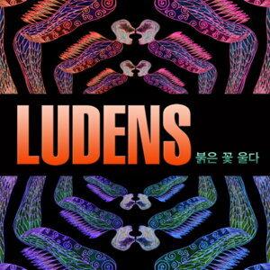 Ludens Ludens(루덴스) 歌手頭像