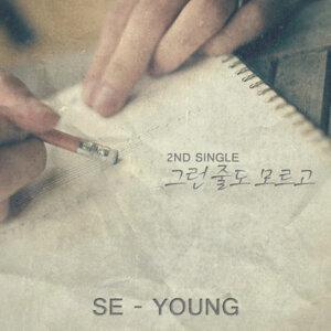 Jeong Se Yeong (정세영) 歌手頭像
