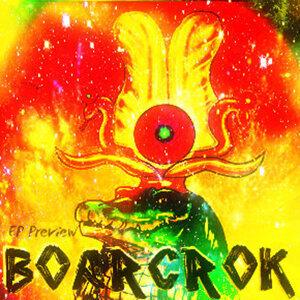 Boarcrok 歌手頭像
