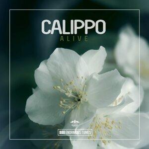 Calippo 歌手頭像