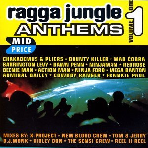 Ragga Jungle Anthems Vol. One 歌手頭像