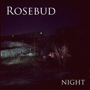Rosebud 歌手頭像
