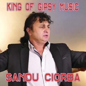 Sandu Ciorba 歌手頭像