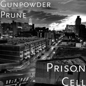 Gunpowder Prune 歌手頭像