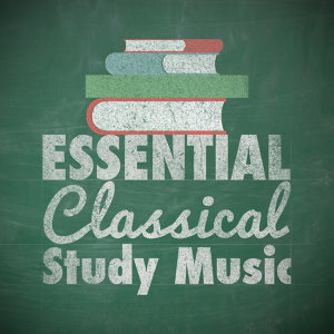 Classical Study Music|Calm Music for Studying|Studying Music and Study Music 歌手頭像