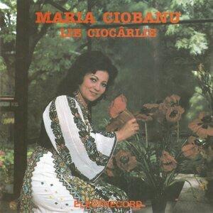 Maria Ciobanu 歌手頭像
