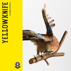 Yellowknife 歌手頭像