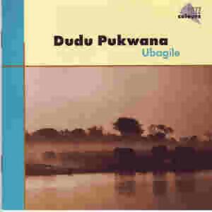 Dudu Pukwana 歌手頭像