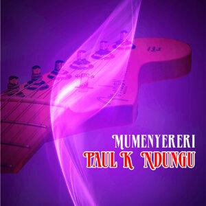 Paul K Ndungu 歌手頭像