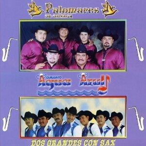 Palomares De Ojinaga 歌手頭像