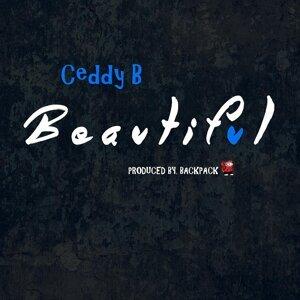 Ceddy B 歌手頭像