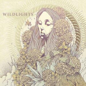 Wildlights 歌手頭像