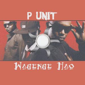 P Unit 歌手頭像